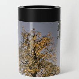 Perfect autumn-sunset colors Can Cooler
