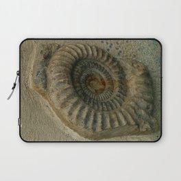 Ammonite Laptop Sleeve