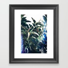 Verve Framed Art Print