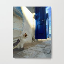 blue door and cat Metal Print