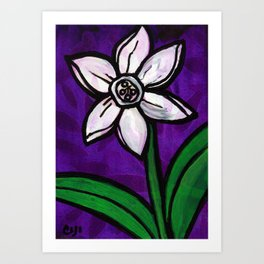 White Daffodil Flower Art Print