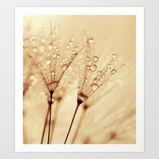 droplets of liquid gold Art Print