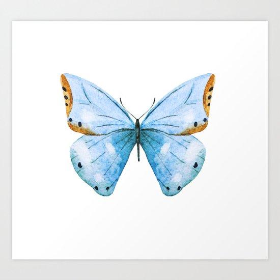 Butterfly 04 Art Print
