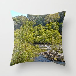 A glimpse of the beautiful river Throw Pillow