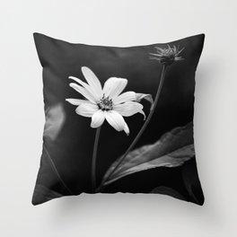 Black and White Heliopsis False Sunflower Throw Pillow
