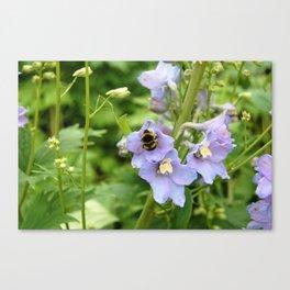 Bee On Purple Flower Canvas Print