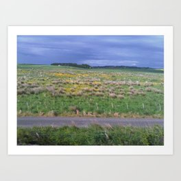 Northumberland Shrubbery by FGW Art Print