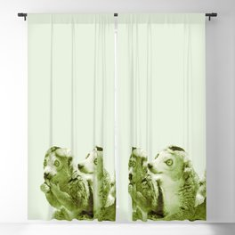Monochrome - the lemur honeytrap Blackout Curtain