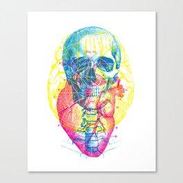 Brain Heart Skull Canvas Print