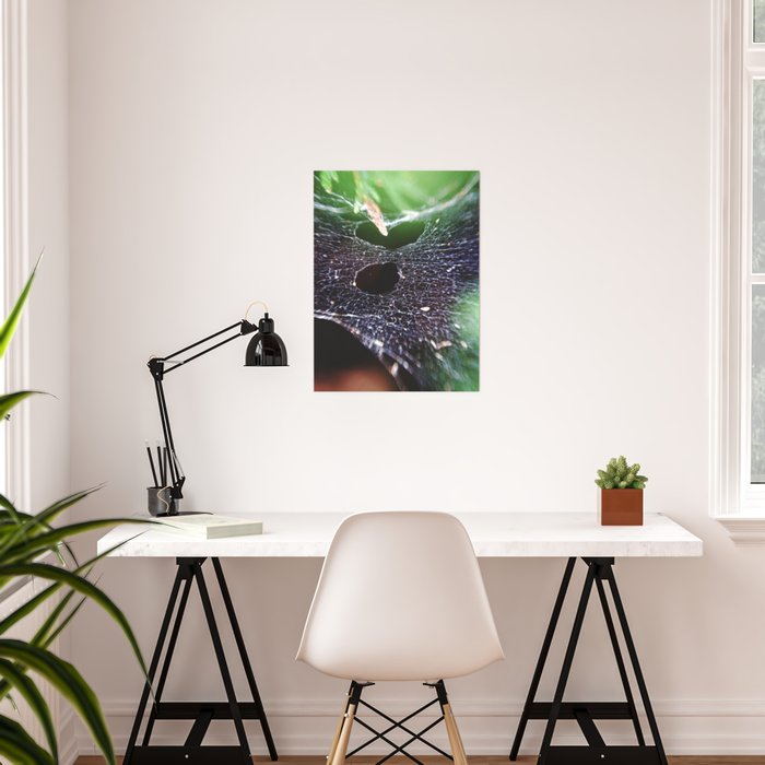 Holes In The Hammock. Spider Web, Nature Photography Poster On Society6