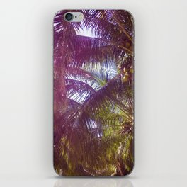 Sunset Palm Trees in Mexico iPhone Skin
