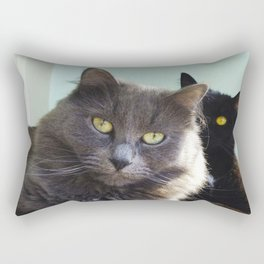 Lovers. Cats. Rectangular Pillow