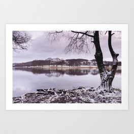 Snow and reflections on Esthwaite Water at dawn. Cumbria, UK. Art Print