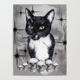Witches Cat Poster