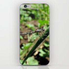 Damsel iPhone Skin