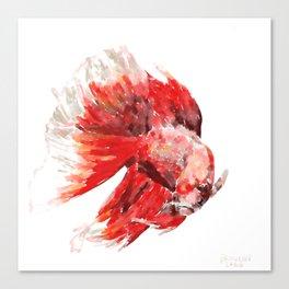 Japanese Fighting Fish Canvas Print