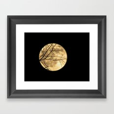 Shadows on the Moon Framed Art Print