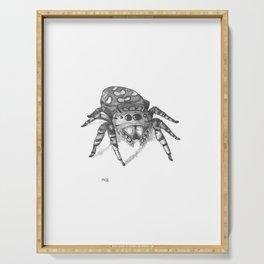 Inktober 2016: Jumping Spider Serving Tray