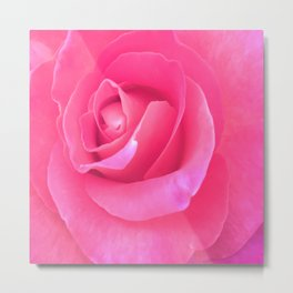 Electric Rose Metal Print