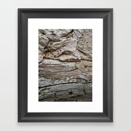 029 Framed Art Print
