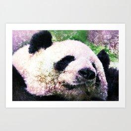 Panda Sleeping Art Print