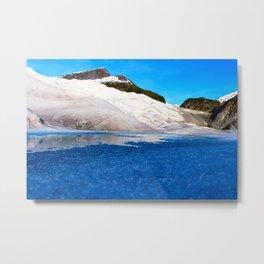 Herbert Glacier, Alaska Metal Print