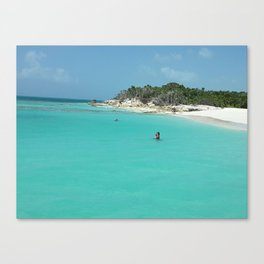 Swimming in the West Indies Canvas Print