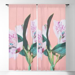 Peruvian Lily Blackout Curtain