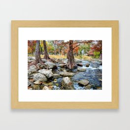 The Guadalupe River Framed Art Print