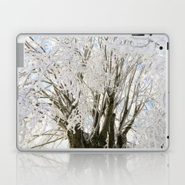 Icy Branches Laptop & iPad Skin