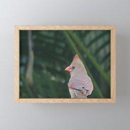 Beautiful cardinal Framed Mini Art Print