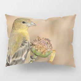 Lady Lesser Goldfinch on a Desert Sunflower Pillow Sham