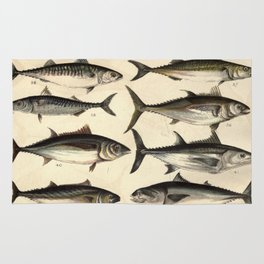 Vintage Illustration of Tunas, Mackerels & Bonitas Rug