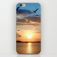 birds over the horizon iPhone Skin