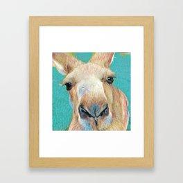 Roo Roo Framed Art Print