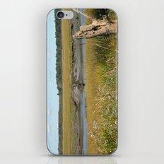 Scarborough Marsh iPhone & iPod Skin