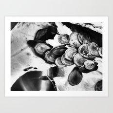 seeds II Art Print