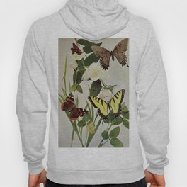 Vintage Butterflies in Nature Illustration (1899) Hoody