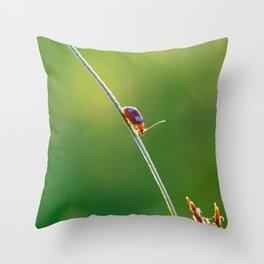 Little red bug perching on grass Throw Pillow