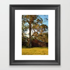 Rural Shed Framed Art Print
