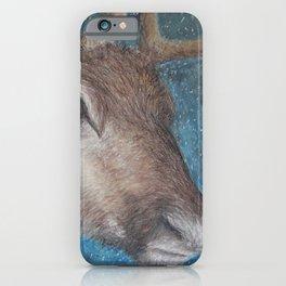 Reindeer (Rangifer tarandus) iPhone Case