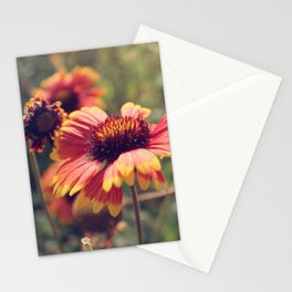 Gaillardia flower Stationery Cards