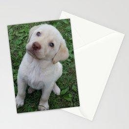 Cutie Pie yellow Lab puppy Stationery Cards
