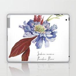 Blue Scabiosa Flower Laptop & iPad Skin