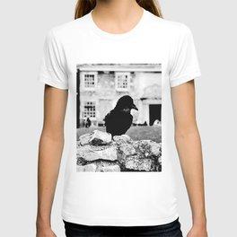 London's Black Raven T-shirt