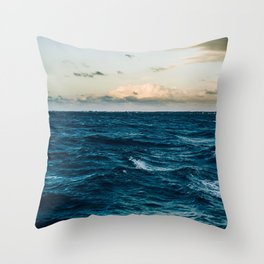 BLUE - AND - WHITE - ABSTRACT - PAINTING - PHOTOGRAPHY Throw Pillow