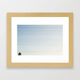 Palmtree & Wires  Framed Art Print