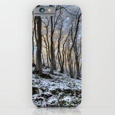 Twisted Beech - II iPhone 6s Slim Case