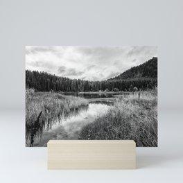 Cattleman's Bridge Site BW Mini Art Print