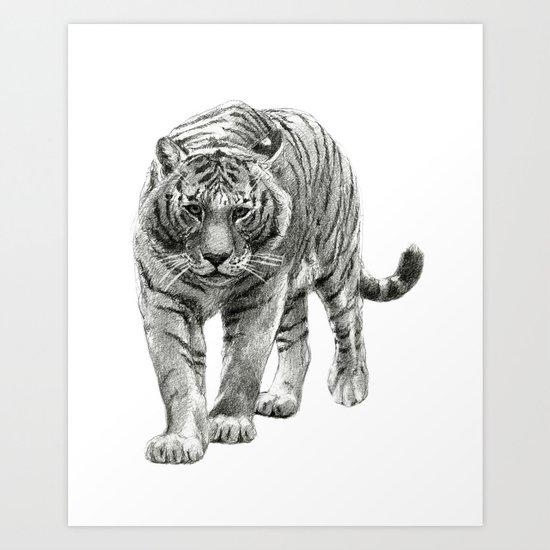 Walking Tigress SK088 Art Print
